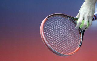 Davis Cup: Oproštaj Hrvatske nakon poraza od Španjolske
